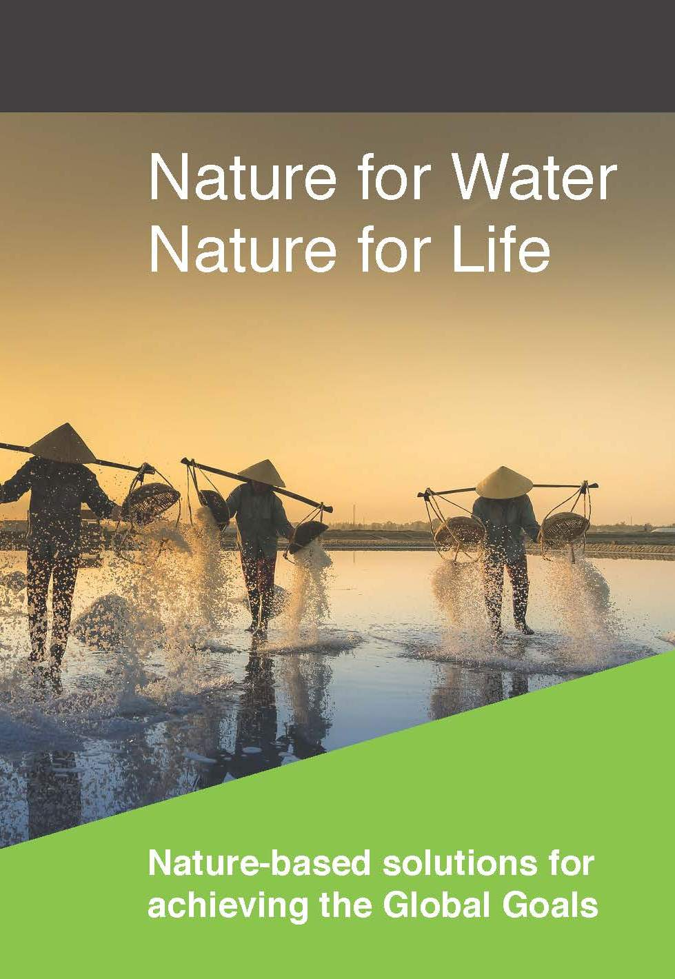 Nature for Water, Nature for Life: Nature-based solutions for achieving the Global Goals
