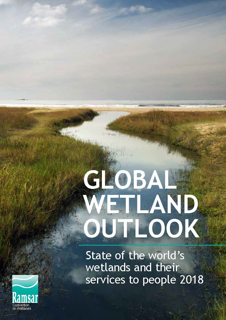 Global Wetland Outlook: State of the World's Wetlands and their Services to People